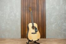 Fender Acoustic CD-60 show