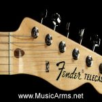FENDER '69 TELE THINLINE Headstock ขายราคาพิเศษ