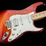 Fender Standard Stratocaster Plus Top body ลดราคาพิเศษ