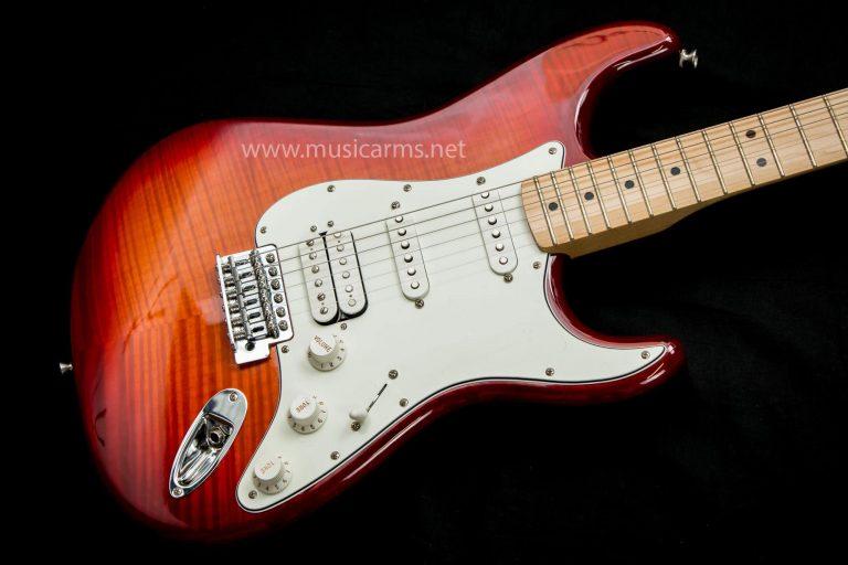 Fender Standard Stratocaster Plus Top body ขายราคาพิเศษ