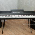 Korg Piano SP-280 ขายราคาพิเศษ