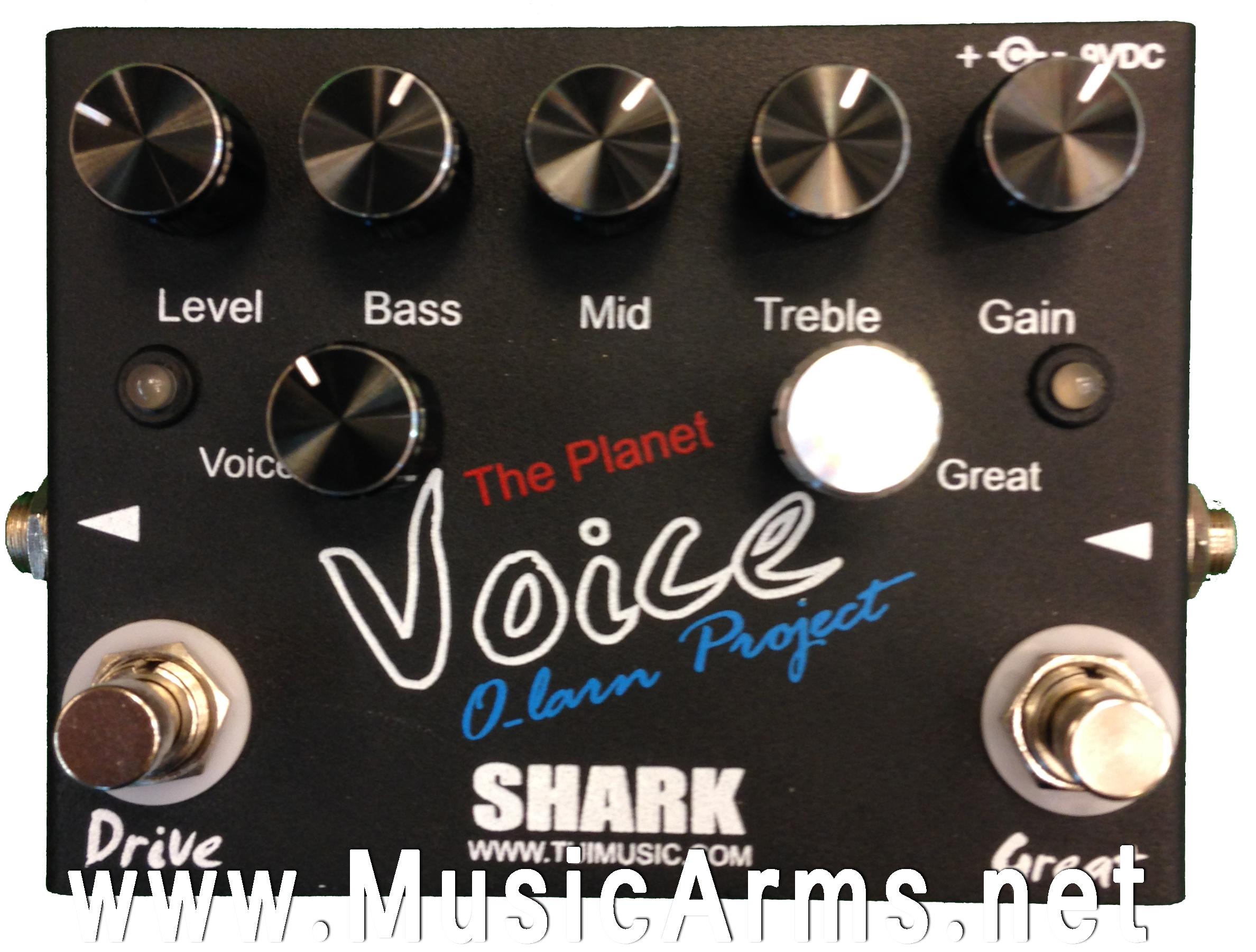 Shark Olarn