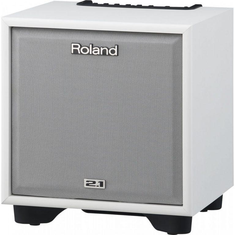 Roland – CM-110 CUBE Monitor ขายราคาพิเศษ
