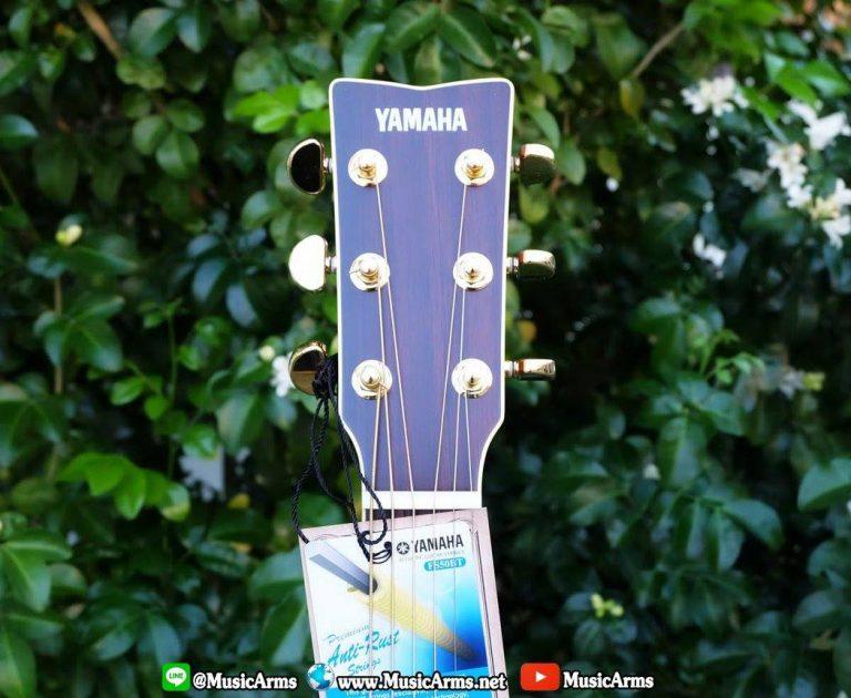 Yamha-LL6ARE-Mahogany & Rosewood 5ply ขายราคาพิเศษ