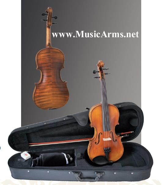 Sandner Violin 306 – SV6 ขายราคาพิเศษ