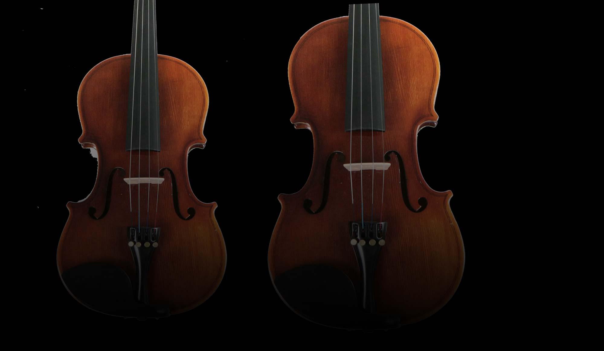 Carols Violin CVL-E900