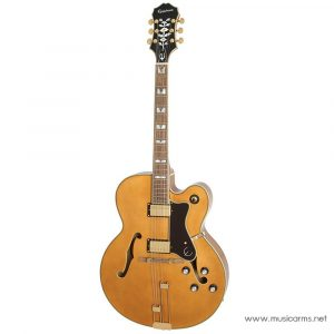 Face cover Epiphone Broadway
