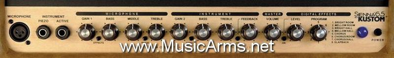 Sienna65 Acoustic ขายราคาพิเศษ