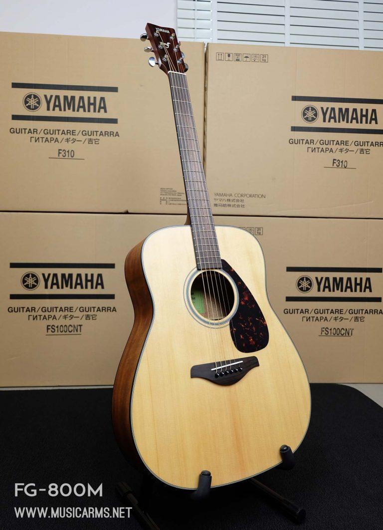 Yamaha-FG800M ขายราคาพิเศษ
