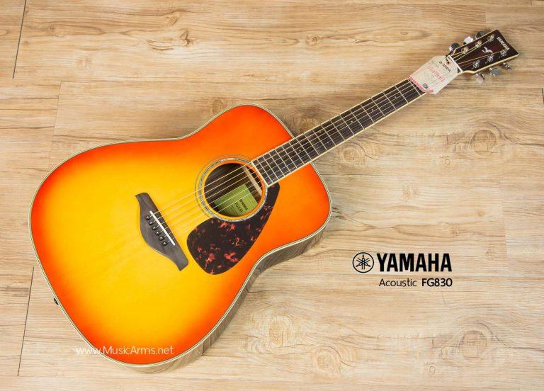 yamaha_FG830_TBSB_Body ขายราคาพิเศษ