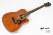Mantic-AG380CE-All Mahogany