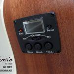 mantic-am10sce-preamp ขายราคาพิเศษ