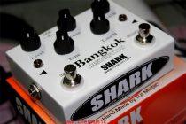 shark-bangkok-distortion