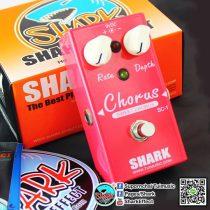 shark-chorus
