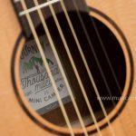 guitar Veelah Mini Camper M ขายราคาพิเศษ