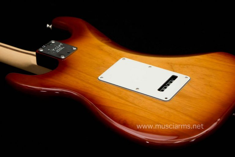 Fender American Professional Stratocaster ด้านหลัง ขายราคาพิเศษ