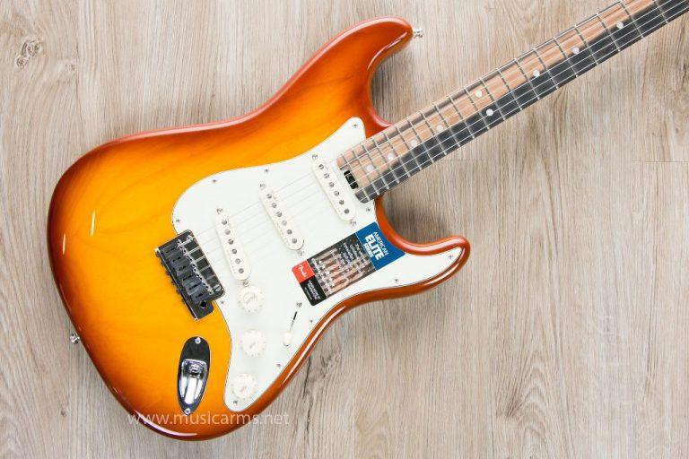 Fender American Elite Stratocaster body ขายราคาพิเศษ