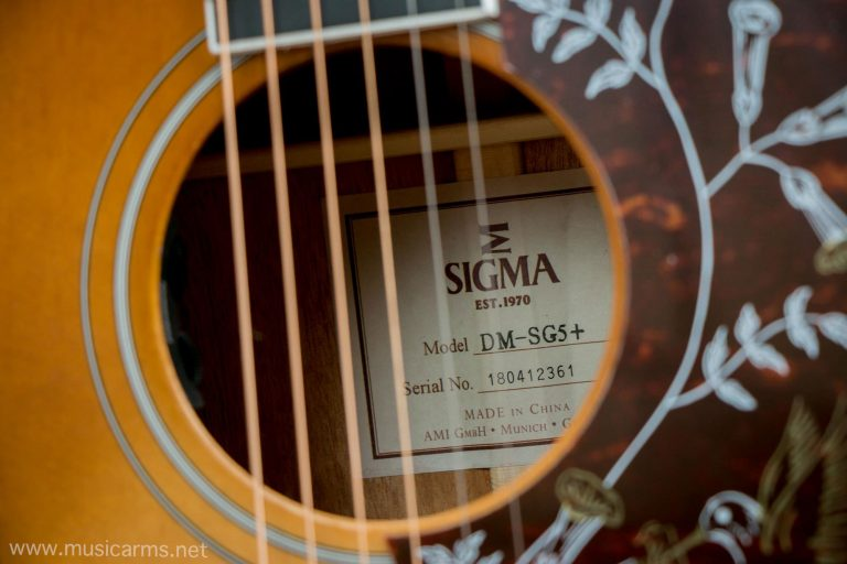 Sigma DMSG5 ขายราคาพิเศษ