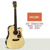 Saga DS20C