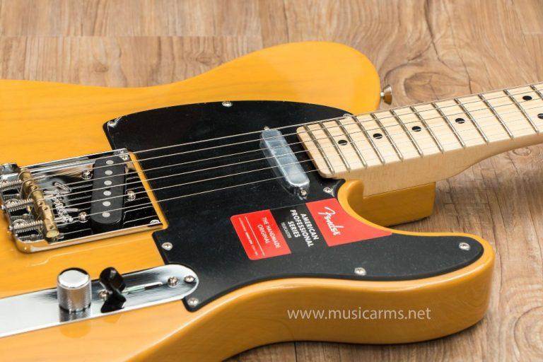 Fender American Professional Telecaster body ขายราคาพิเศษ