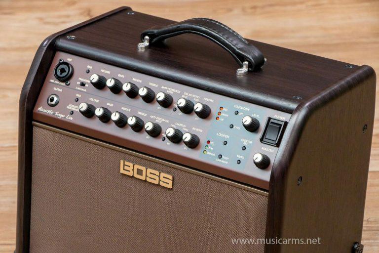 control Boss Acoustic Singer Live ขายราคาพิเศษ