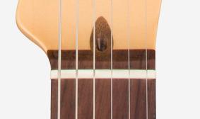 Fender American Professional Deluxe ShawBucker Telecaster6