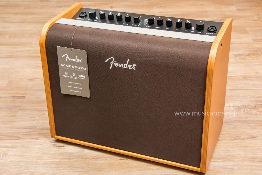Fender Acoustic 100 แอมป์