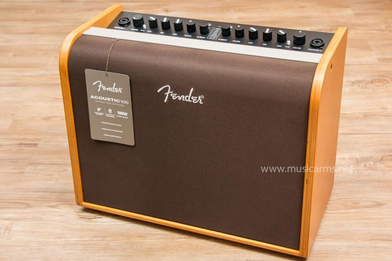 Fender Acoustic 100 ขายราคาพิเศษ