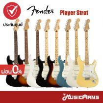 Cover กีต้าร์ไฟฟ้า Fender Player Strat SSS รวมสี