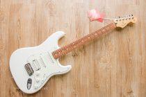 Fender Player Stratocaster HSS กีต้าร์