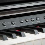 Artesia DP3 Plus Digital Piano ขายราคาพิเศษ
