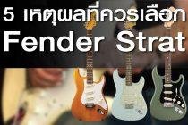 5 เหตุผลที่ควรเลือก Fender Stratocaster