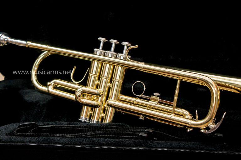 ทรัมเป็ต Coleman Standard Gold ขายราคาพิเศษ
