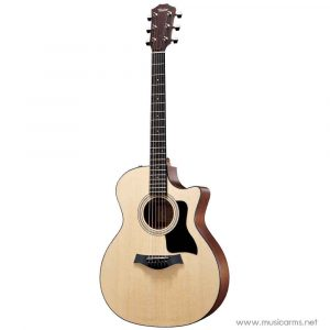 Face cover Taylor 314