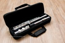 Flute Coleman Standard ราคา