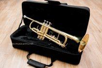 Trumpet Coleman Standard Gold +bag