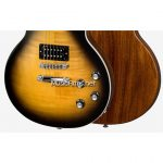 Gibson Les Paul Signature Player Plus 2018 Electric Guitar ขายราคาพิเศษ