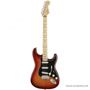 Face cover Fender Player Stratocaster Plus Top