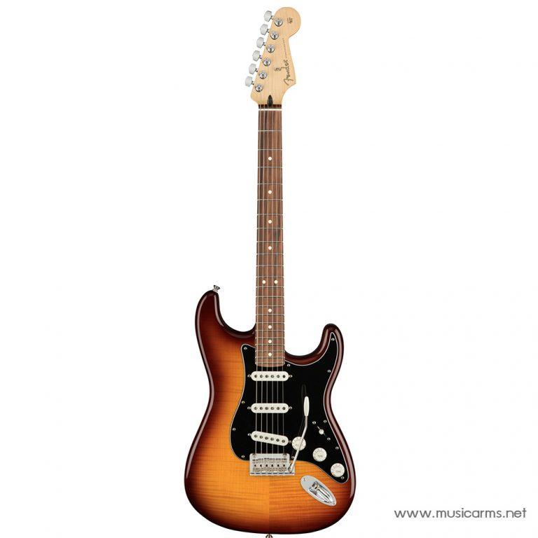 Face cover Fender Player Stratocaster Plus Top ขายราคาพิเศษ
