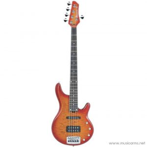Face cover Ibanez RD505