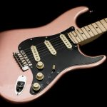 Fender American Performer Stratocaster Penny body ขายราคาพิเศษ