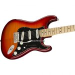 Fender Player Stratocaster Plus Topระบบ ขายราคาพิเศษ