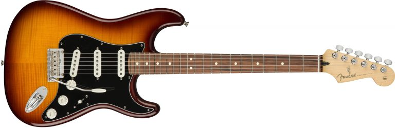 Fender Player Stratocaster Plus Top ขายราคาพิเศษ