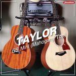 Taylor GS Mini (Mahogany T