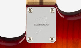 Fender Player Stratocaster HSS Plus Topเพสหลัง3