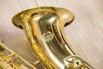 Saxophone Tenor Coleman Standard GOLD full body