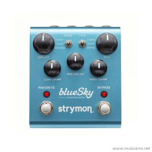 Face cover Strymon-BlueSky