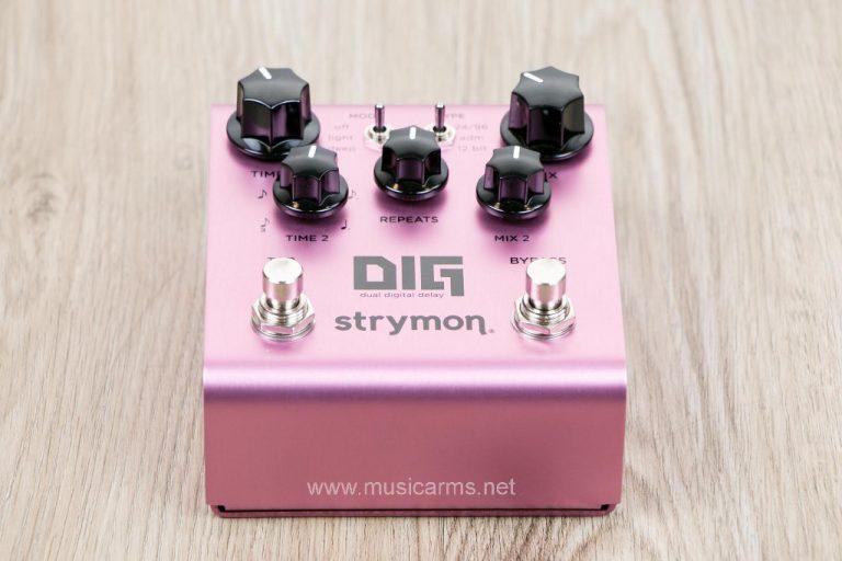 Strymon DIG Dual Digital Delay เอฟเฟค ขายราคาพิเศษ