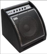 Soundking DS-30b