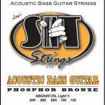 SIT 5-String ลดราคาพิเศษ